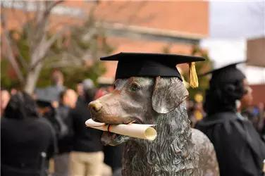 美国大学本科教学排名